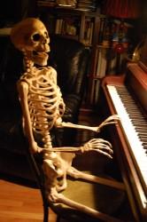Poseable Skeleton