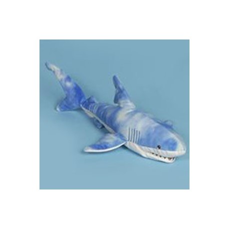 Sunny Blue Shark