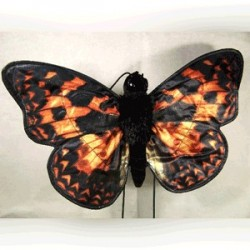 Sunny Painted Lady Butterfly Puppet