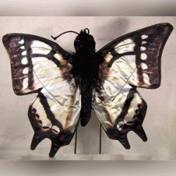 Sunny Swallowtail Butterfly Puppet