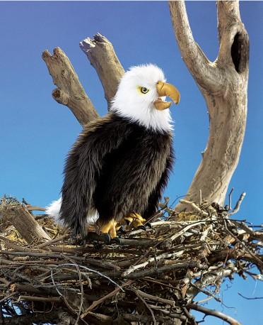 Folkmanis Bald Eagle Puppet
