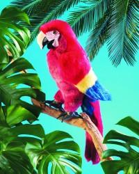 Folkmanis Scarlet Macaw