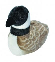 Audubon Birds Canada Goose
