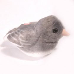 Audubon Birds Dark Eyed Junco