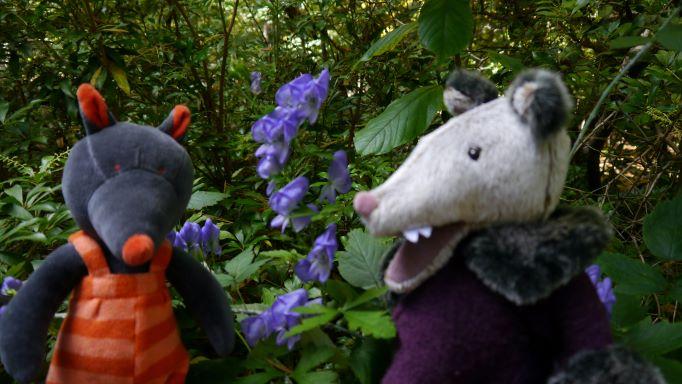 Wolf&IgorshareancienttalesofWolfsbane